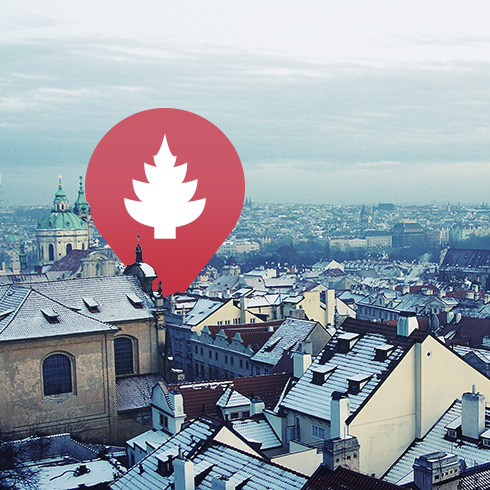 snowy city with locr christmas tree icon